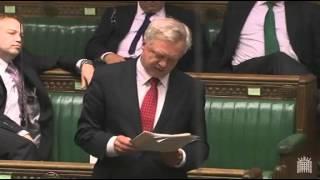 MP David Davis speaks in The Queen's Speech Debate