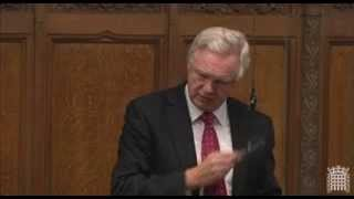 David Davis intervenes on Stephen Twigg during the debate on recall in Parliament